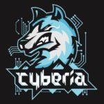 Киберспортивный холдинг Сyberia